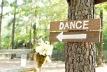 Dance Sign Rustic Alabama Wedding